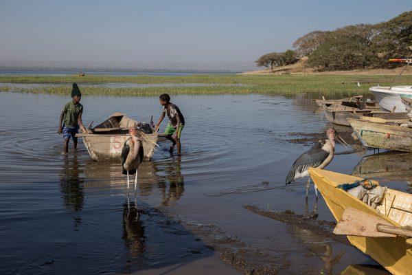 Men Work Hombres trabajo Männer Arbeit Hawasa Ethiopia Ethiopien Etiopía Etiopia fishermen pescadores barca boat fish pescado boot marabú marabou stork Marabu child labour trabajo infantil