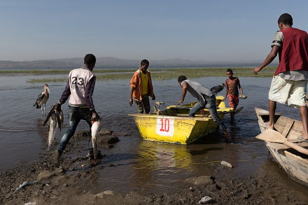 Men Work Hombres trabajo Männer Arbeit Hawasa Ethiopia Ethiopien Etiopía Etiopia fishermen pescadores barca boat fish pescado boot marabú marabou stork Marabu