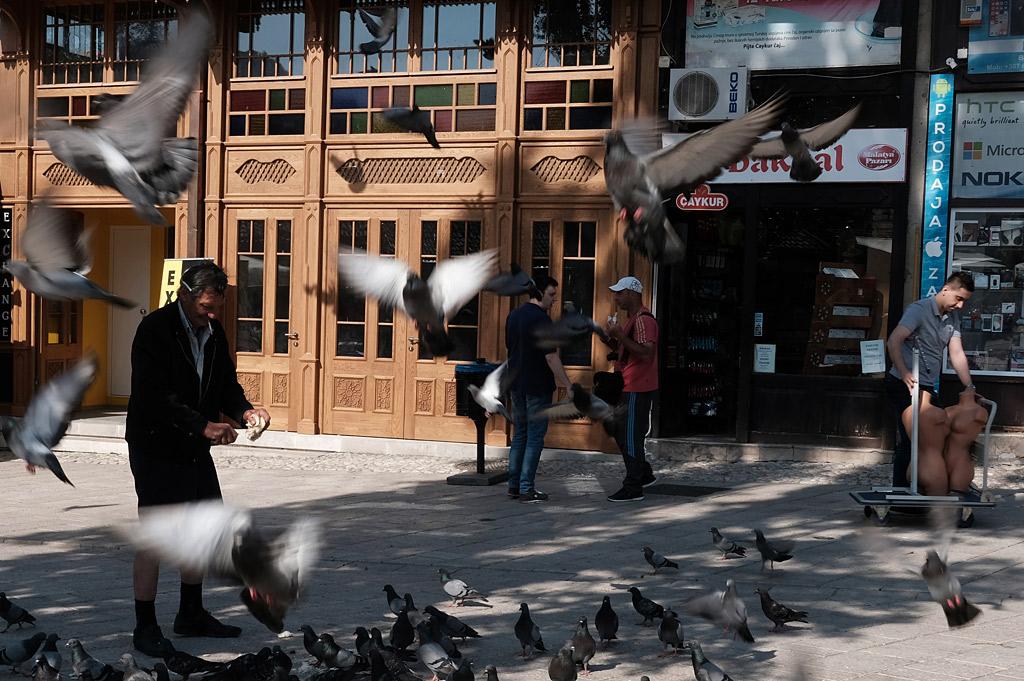 Sarajevo doves palomas Bosnia Herzegovina street urbano calle shadows sombras