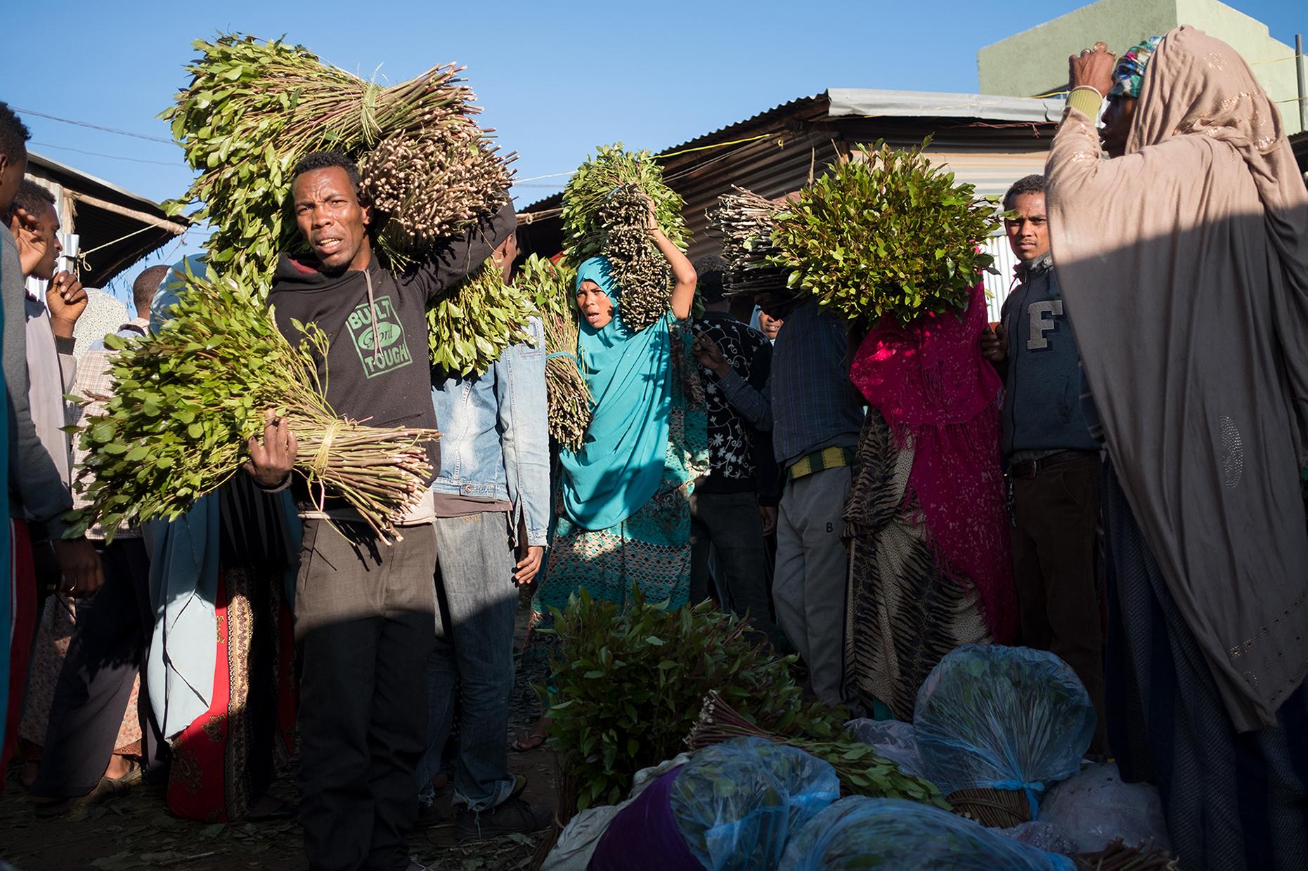 khat ethiopia harar market