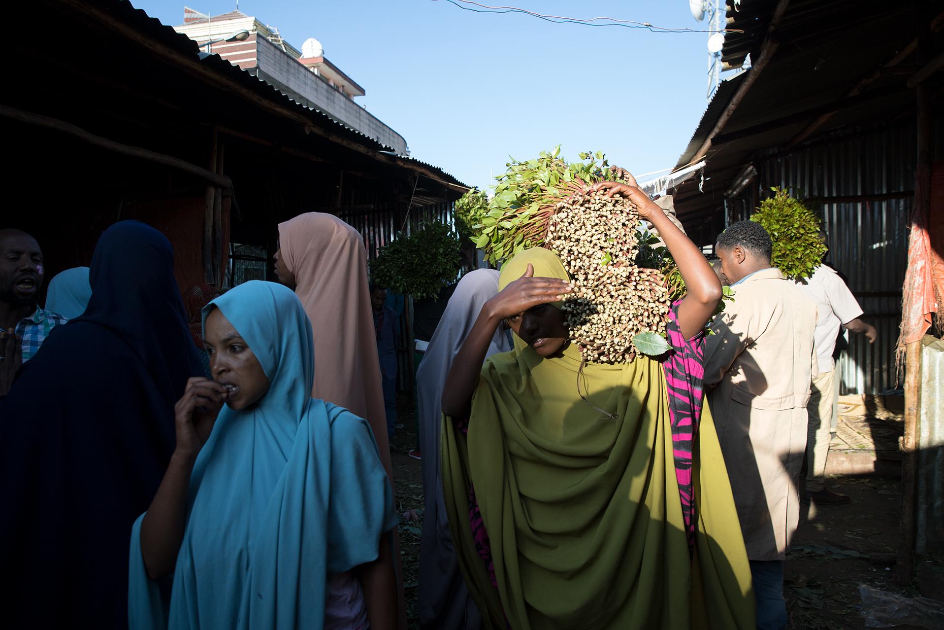 khat ethiopia harar market bunch
