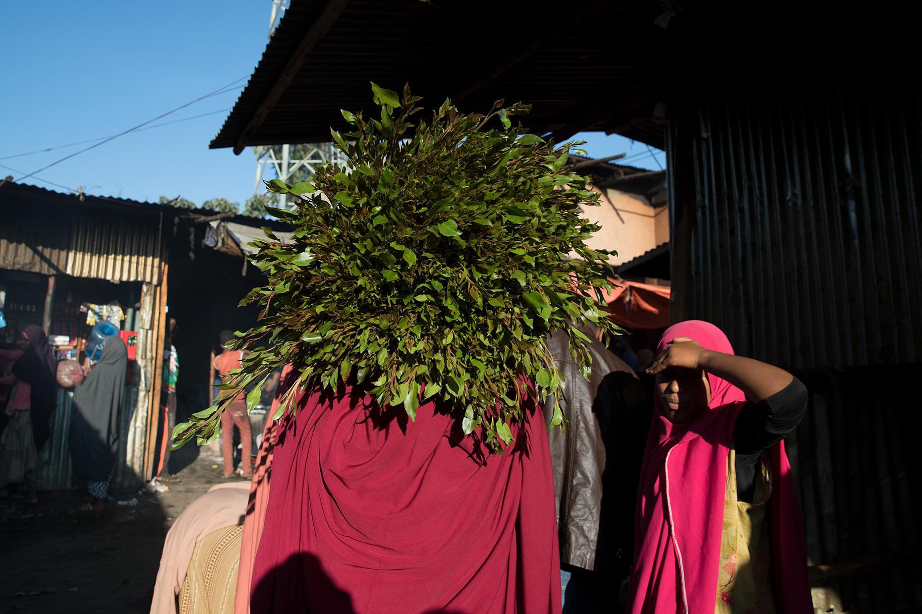 khat ethiopia harar market bunch Awaday