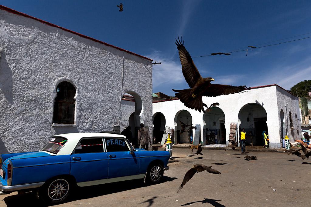 etiopía ethiopia harar streetphotography africa streetlife street travel viajes urbana anarivasphotography anarivasimages taxi blue eagle azul águila